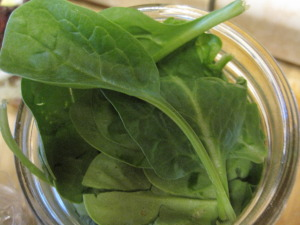 Spinach added to the remaining space in the jar
