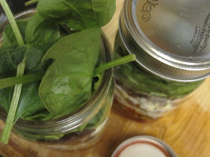 The wide mouth mason jars are sealed and placed in the refrigerator.