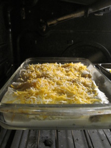 Chicken enchiladas ready for oven