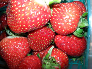 start with fresh strawberries