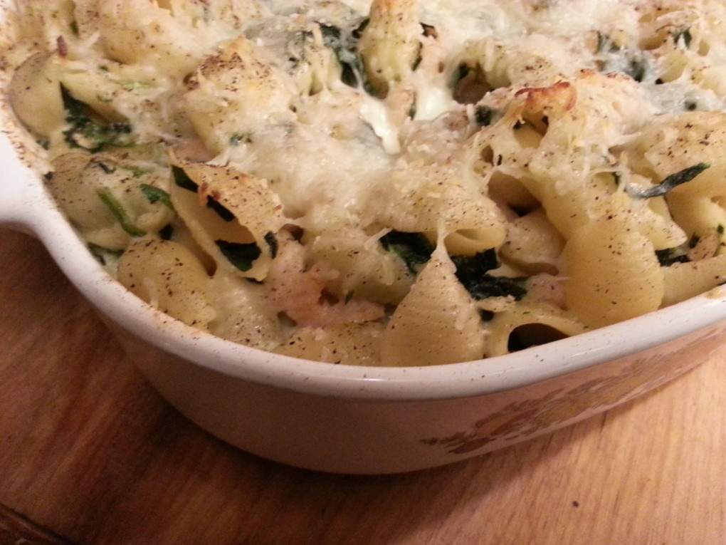 shrimp baked with shell pasta to creat a cheesy and delicious dish