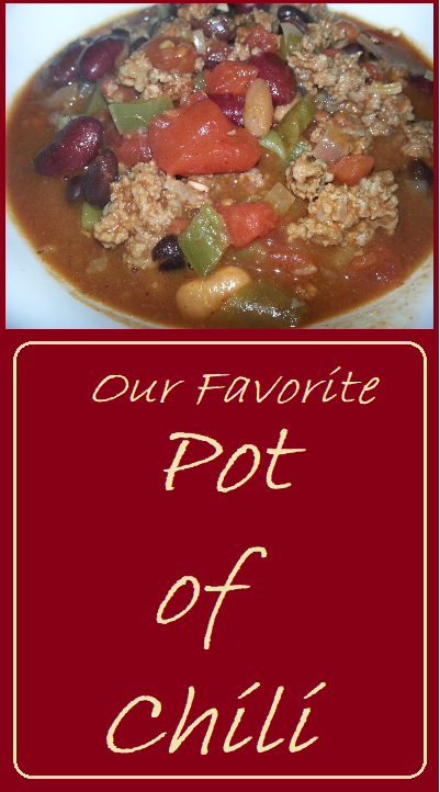 Our Favorite Pot of Chili--A simple and hearty scratch made chili