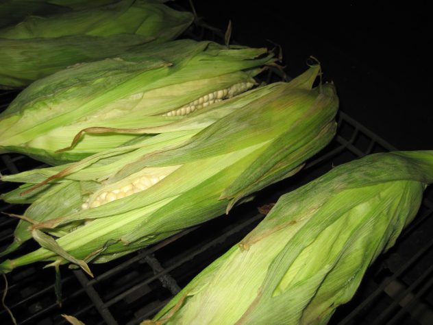 Grilled Corn on the Grill and in the husk