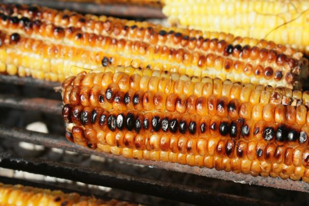 grilled corn, naked style