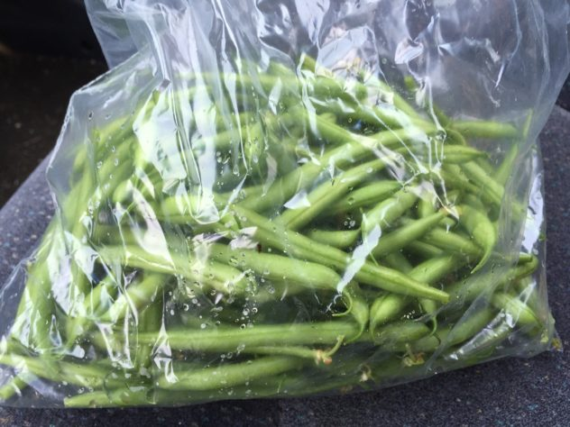 Fresh Green Beans for Garlic Green Beans