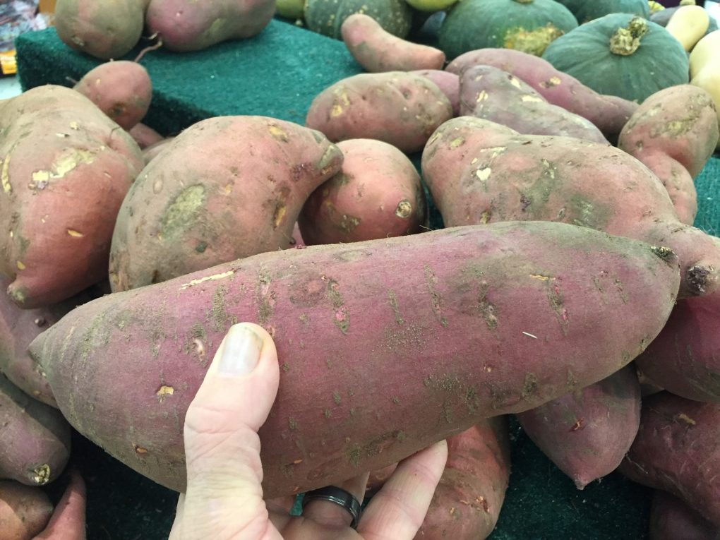 Selecting a sweet potato in the grocery store for Sweet Potato Casserole