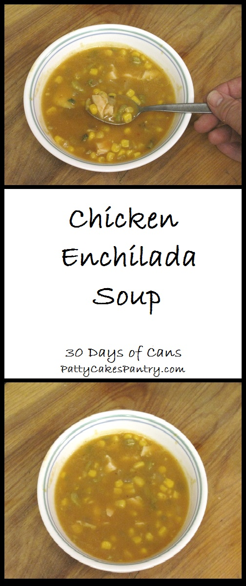 Chicken Enchilada Soup --Ready in about 30 minutes