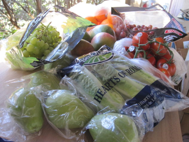 The Third $25 Grocery Haul and Menu Plan--Seriously Over Budget
