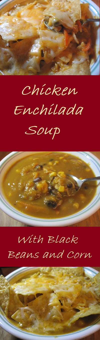 Chicken Enchilada Soup with Black Beans and Corn--A simple, hearty, and delicious meal that's also figure friendly.