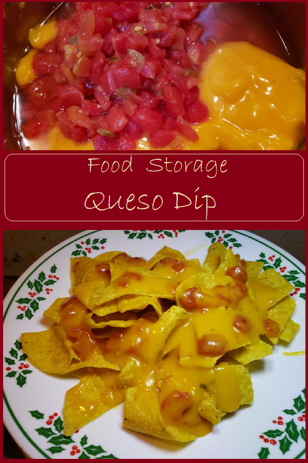 Food Storage Queso Dip --Make Nacho Cheese Sauce from Pantry Staples.