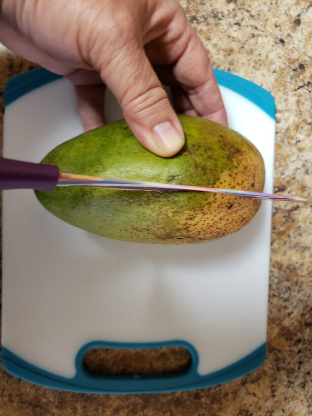 A knife is beginning to cut through the flesh of a mango to cut it in half parallel to the bone as the first step for making mango flowers.