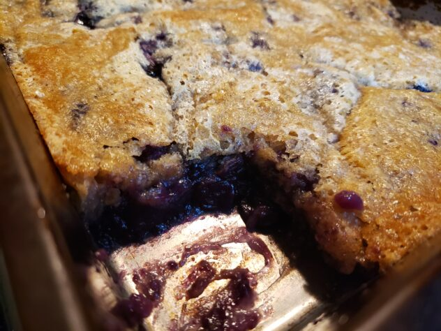 The blueberry cobbler is in it's pan. The golden crust covers the top, but in the bottom left corner, a square of the cobbler has been cut away revealing a beautiful dark filling with visibl blueberries in it. A drop of the sweet filling has fallen onto the golden crust to the right of the hole leaving a purple dot of the sweeet filling on top of the crust.