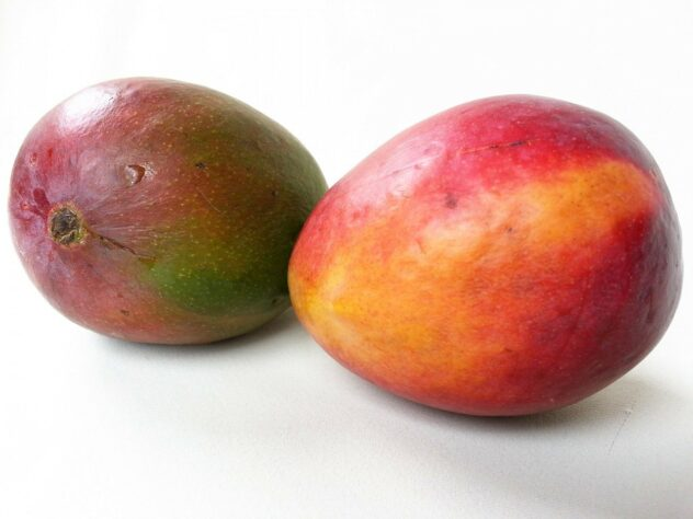 Two mangoes sitting on a white counter.