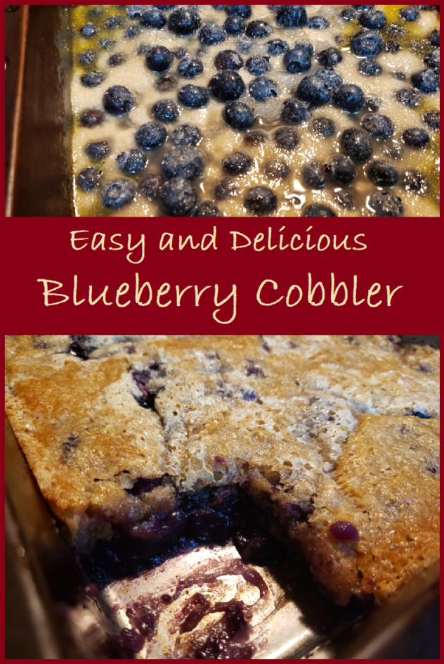 """This image is a two photo collage.  The top photo is a view of the top of an unbaked cobbler Blueberries are evenly distributed on top of the cream colored batter. Melted butter continues to seep out from the edges of the batter, making small puddles of golden liquid on top of the batter. Sugar crystals which have been sprinkled on top of the berries are visible in the photo..  The bottom photo is a view of the blueberry cobbler is in it's pan. The golden crust covers the top, but in the bottom left corner, a square of the cobbler has been cut away revealing a beautiful dark filling with visibl blueberries in it. A drop of the sweet filling has fallen onto the golden crust to the right of the hole leaving a purple dot of the sweet filling on top of the crust.  Between the two photos is a banner with the words """"Easy and Delicious  Blueberry Cobbler."""""""