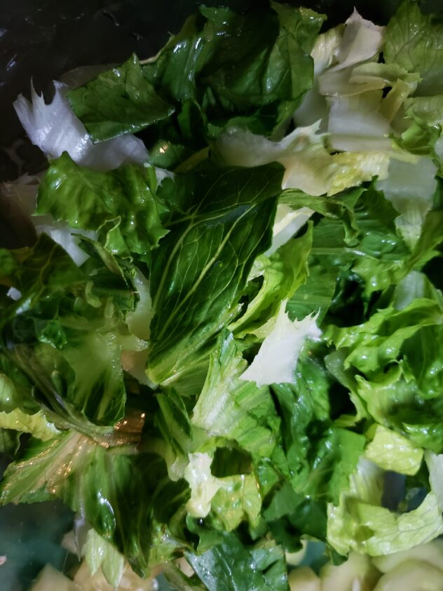 A bowl filled with torn pieces of Romaine lettuce with varying shades of green.