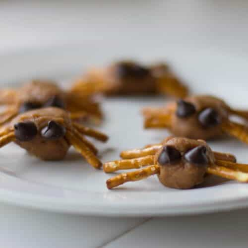 Balls of nut butter with pretzels sticking out of the side to resemble spider legs.  Each peanut butter spider was topped with two chocolate chips to make eyes.  A simple and delicious Vegan Halloween Treat